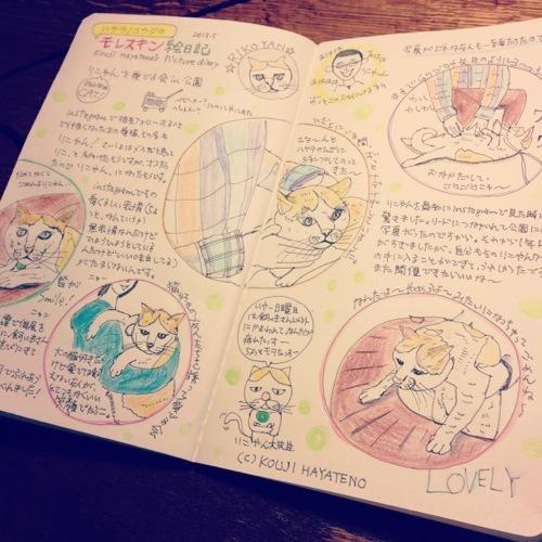 友人の飼い猫ちゃんと遊んだ時の絵日記の完成版
