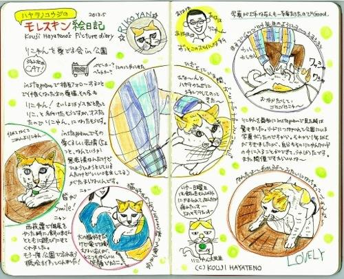 マイペースでジャンボで可愛い猫、りこやんを愛でる会の絵日記。