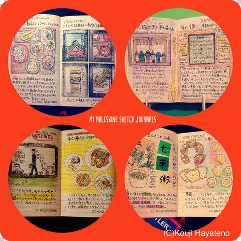 My moleskine sketch journals